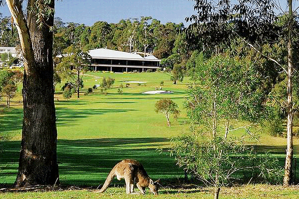 merimbula golf club